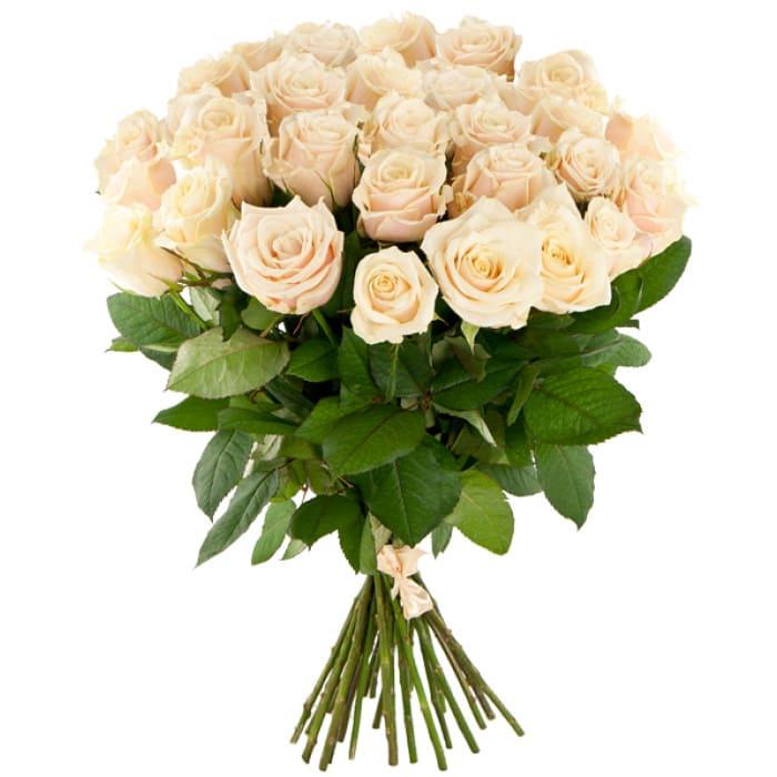 Купить цветы кремовые розы минск, большие бумажные